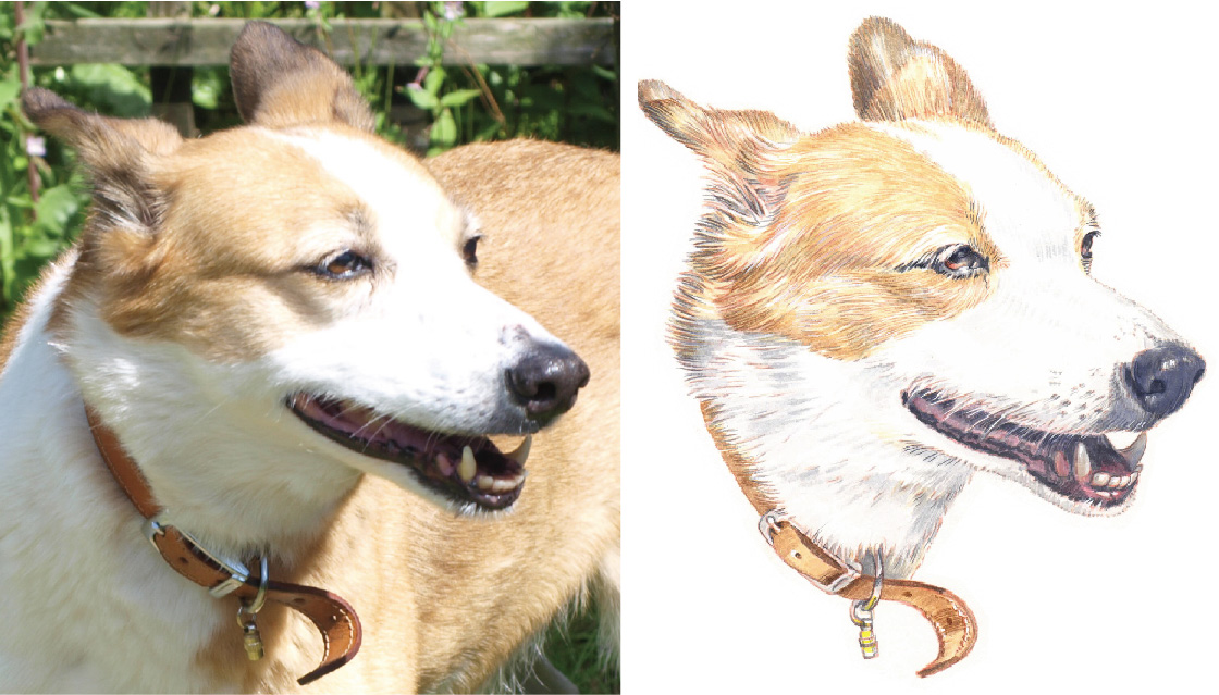 Example image of dog portrait painted from photo